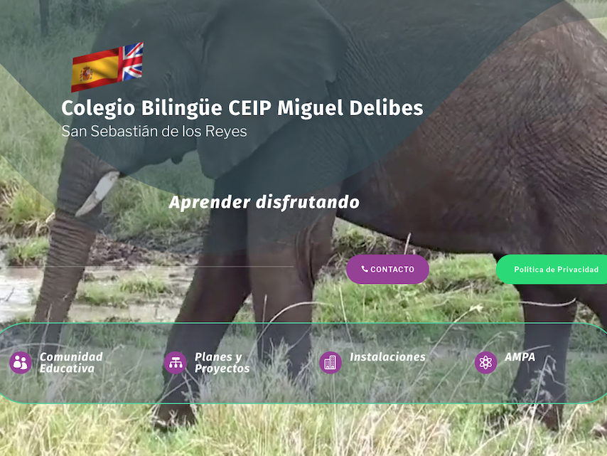 ¡¡Estrenamos web en el Miguel Delibes!!